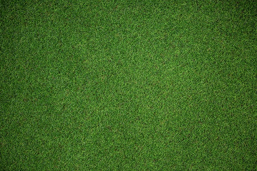 Which Putting Green Turf is Right For You? Thumbnail image